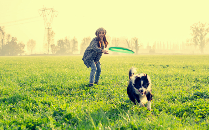 get-your-dog-the-playtime-they-deserve